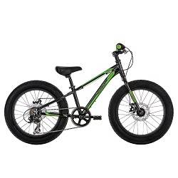 Image: MALVERN STAR ATTITUDE 20B PLUS 2016 BLACK